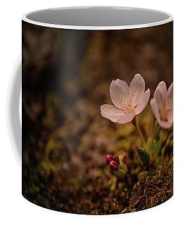 Spring Arrival In Seattle Coffee Mug