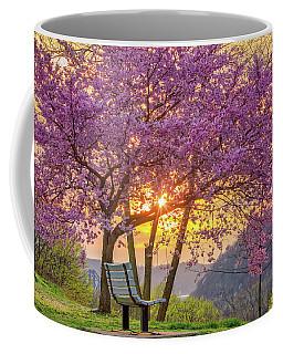 Spring Bench In Beaver 2 Coffee Mug