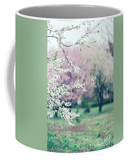Spring Blossoms On Tree Branches In Colorful Garden Coffee Mug