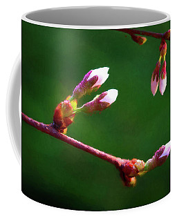 Flowering Trees Coffee Mugs