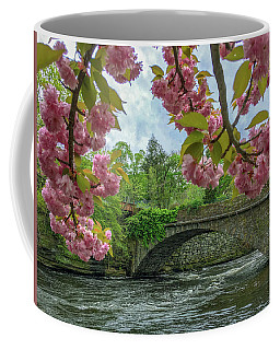 Coffee Mug featuring the photograph Spring Garden On The Bridge  by Michael Hughes