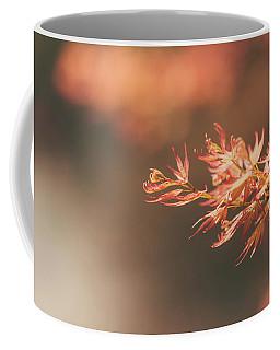 Spring Or Fall Coffee Mug