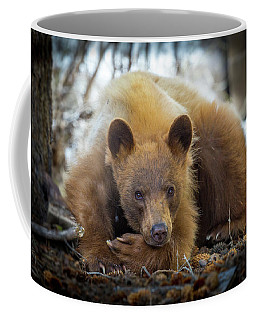 Spring Slumber  Coffee Mug