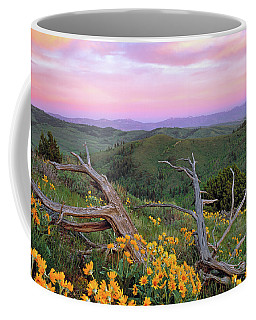 Spring Sunset Coffee Mug
