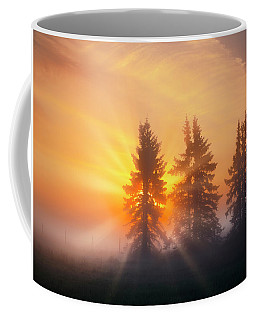 Spruce Trees In The Morning Coffee Mug