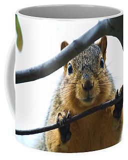 Spying Fox Squirrel Coffee Mug