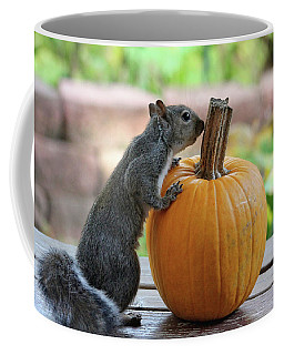 Coffee Mug featuring the photograph Squirrel And Pumpkin by Trina Ansel