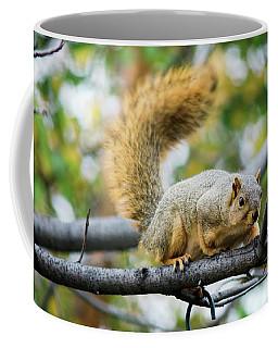 Squirrel Crouching On Tree Limb Coffee Mug