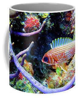 Squirrel Fish Coffee Mug
