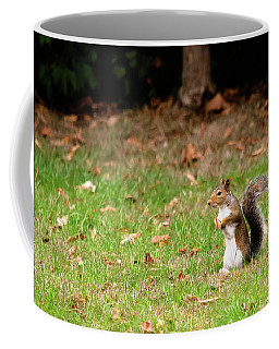 Coffee Mug featuring the photograph Squirrel Stood Up In Grass by Scott Lyons