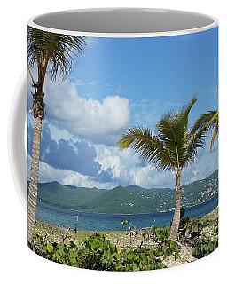 St. John View Coffee Mug