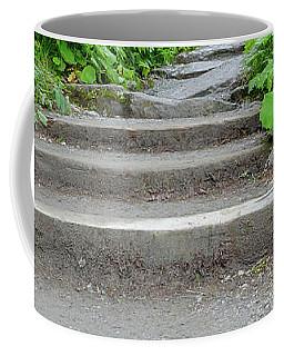 Stairs To The Woods Coffee Mug