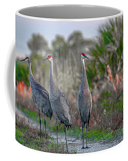 Coffee Mug featuring the photograph Standing Sandhills by Tom Claud
