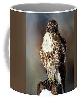 Stare Down With A Hawk Coffee Mug