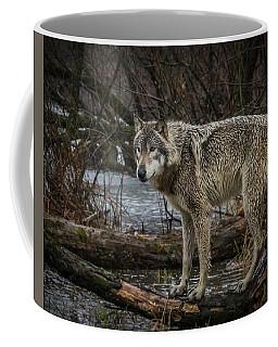 Stay Dry Coffee Mug