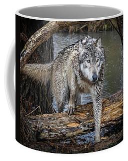 Stepping Over Coffee Mug