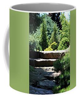 Stone Stairs In Chicago Botanical Gardens Coffee Mug