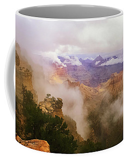 Storm In The Canyon Coffee Mug