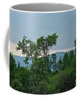 Storm's End Coffee Mug