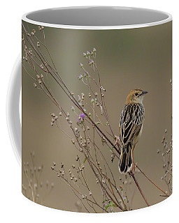 Stout Cisticola Coffee Mug