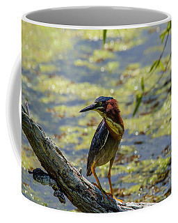 Striking A Pose Coffee Mug