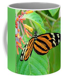 Striking In Orange And Black Coffee Mug