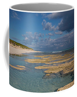 Stromatolites On Stocking Island Coffee Mug