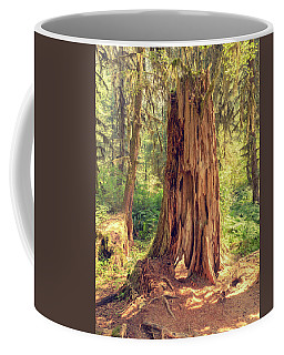 Stump In The Rainforest Coffee Mug