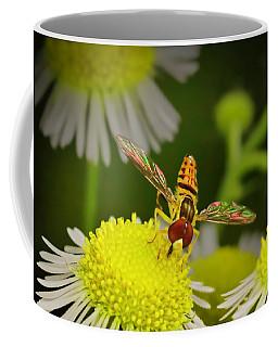 Sugar Bee Wings Coffee Mug