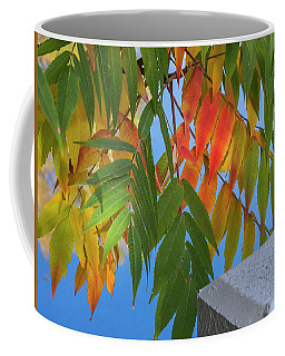 Coffee Mug featuring the photograph Sumac by Mark Mille