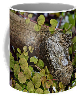 Coffee Mug featuring the photograph Summer Leftover by Ann E Robson