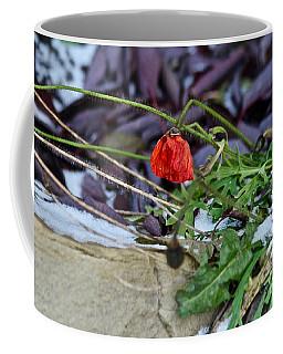 Coffee Mug featuring the photograph Summer Remnat by Ann E Robson