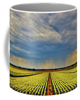 Summer Storm In The Corn Fields Coffee Mug