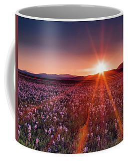 Sun Rays At Camas Prairie Coffee Mug