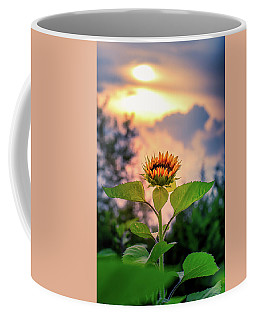 Sunflower Opening To The Light Coffee Mug
