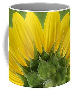 Coffee Mug featuring the photograph Sunflower Sunrise - Botanical Art by Debi Dalio