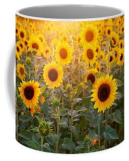 Sunflowers Field Coffee Mug