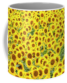Sunflowers Galore Coffee Mug