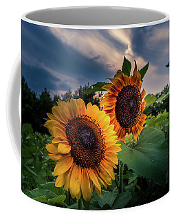 Sunflowers In Evening Coffee Mug