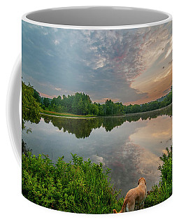 Coffee Mug featuring the photograph Sunrise At Ross Pond by Matthew Irvin