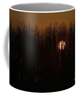 Coffee Mug featuring the photograph Sunrise Glow by Ann E Robson