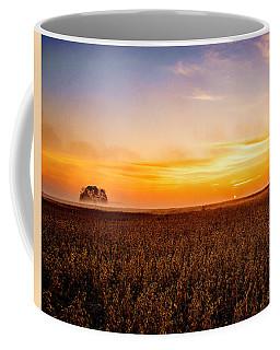 Sunrise In The Bean Field Coffee Mug