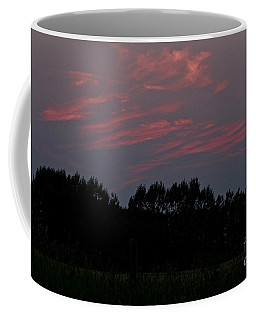 Coffee Mug featuring the photograph Sunset Pink by Ann E Robson
