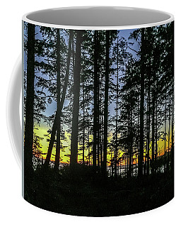 Coffee Mug featuring the photograph Sunset Thru The Trees by Ed Clark