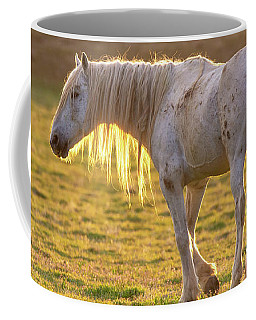 Coffee Mug featuring the photograph Sunset With The Old Guy by Mary Hone