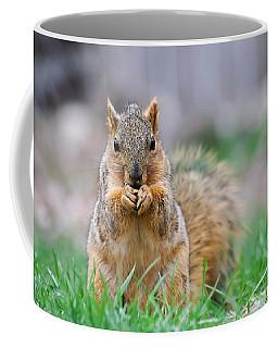 Super Cute Fox Squirrel Coffee Mug