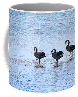 Swans On Parade Coffee Mug