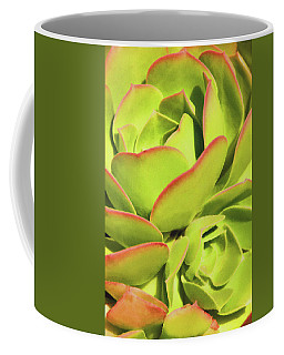 Sweet Succulents I Coffee Mug