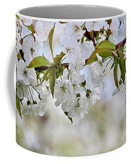 Sweet White Cherry Blossoms Coffee Mug