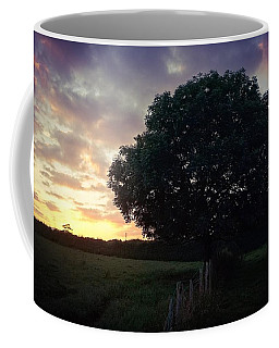 Symme Tree Sunrise Coffee Mug